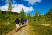 Vandrare i bergen — Stockfoto