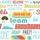 Seamless vector pattern with snowboarding stuff and words, flat design — Vecteur