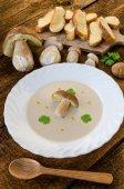 Creame sopa de cogumelos — Fotografia Stock