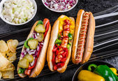 All beef dogs, variantion of hot dogs — Stock Photo
