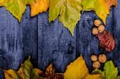 Autumn leaves on wood board — Stock Photo