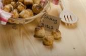 Cheesy bites — Stock Photo