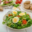 Salat day - be healthy — Stock Photo #71058581
