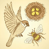 Sketch set with sparrow, bee and nest in vintage style — Stockvektor