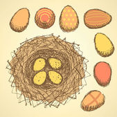 Sketch nest with eggs in vintage style — Stockvektor