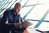 Managing director examining paperwork — Stock Photo