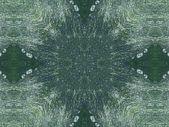Abstract Kaleidoscope Background — Stock Photo