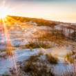 Winter Day at the Baltic sea Beach. — Stock Photo #62557213