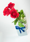 Three dark red roses isolated on white background — Stock Photo