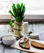Ramson with rye bread and sour cream with salt, on a gray board, — Stock Photo