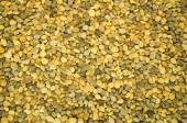 Bee pollen seeds — Stock Photo
