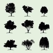 Deciduous tree silhouettes — Stock Vector