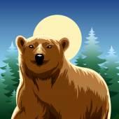 Brown bear — Stock Vector