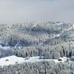 Alpine village winter view — Stock Photo #59699451