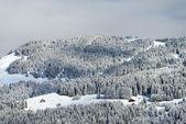 Alpine village winter view — Stock Photo