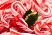 Holly and Candy Cane Background. — Stock Photo