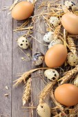 Fresh  eggs. — Stock Photo