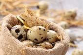 Fresh quail eggs. — Stock Photo