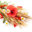 Wheats and poppies in bouquet. — Stock Photo #68475709