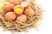 Chicken eggs in nest. — Stock Photo