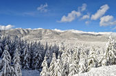 Yellowstone på vintern — Stockfoto