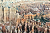Bryce Canyon National Park, Utah — Stock Photo