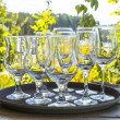 Wine glasses — Stock Photo #52756775
