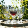 Glass of wine — Stock Photo #52785937