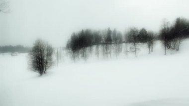 Snow storm — Stock Video