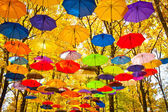Autumn umbrellas in the sky — Stock Photo