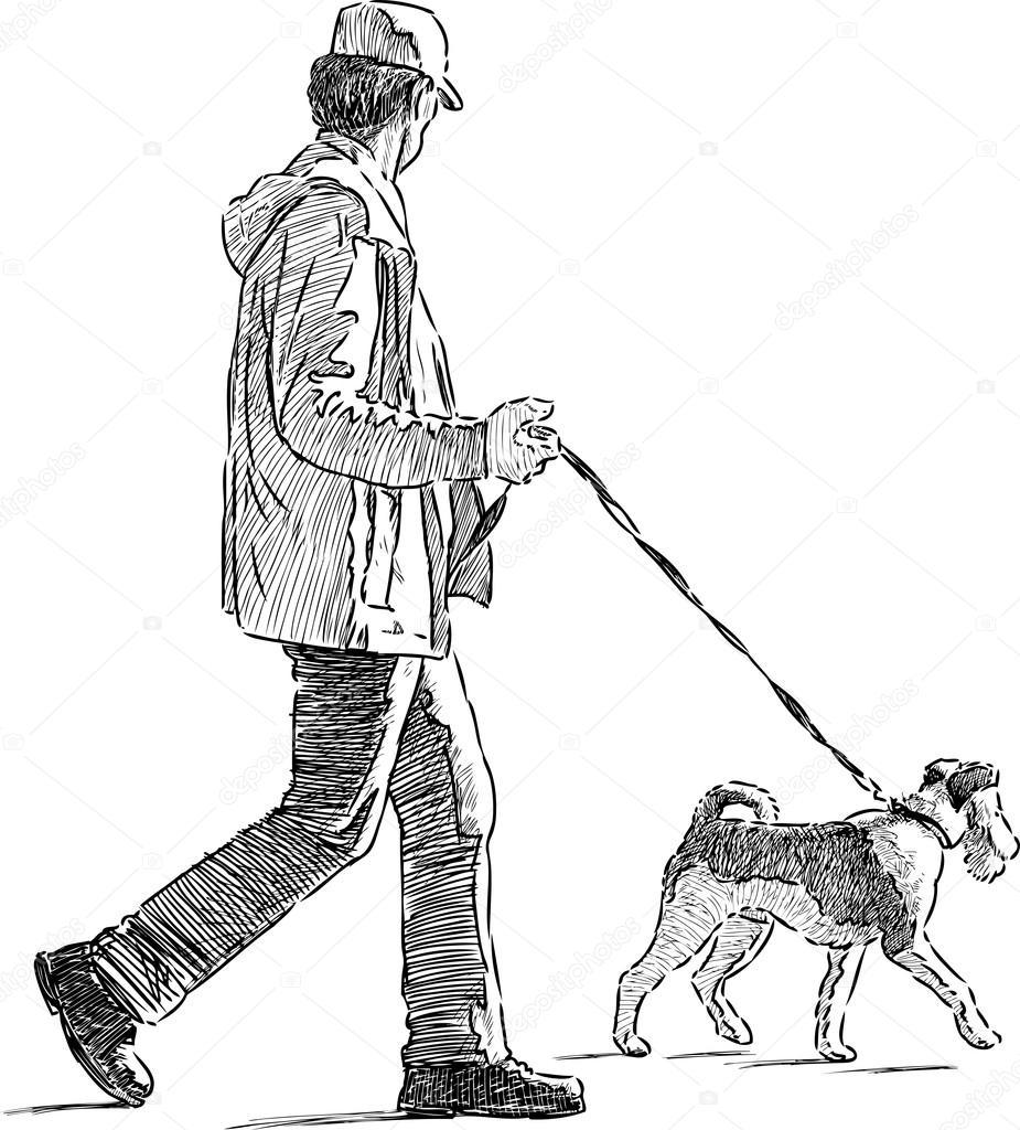 Dog Walking Licence