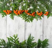 Christmas frame with fir tree and rowan berry  — Stock Photo