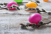 Easter painted eggs and pussy willows — Foto Stock