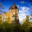Постер, плакат: The Gothic tower Pushkin Russia