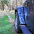 Jeep Wrangler in a pine forest — Stock Photo #61337345