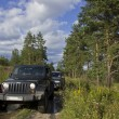 Russia, Karelia, July 16, 2015: Photo of jeep Wrangler in Russia. Wrangler is a compact four wheel drive off road and sport utility vehicle, manufactured by American automaker Chrysler. — Stock Photo #79113388