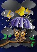 Owl holding an umbrella in the rain. — Stock Vector
