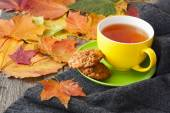 Cup of hot tea, biscuits and knitted blanket on the table, strew — Stock Photo