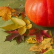 Pumpkin and colorful autumn leaves on a green wooden background — Stock Photo #54705121