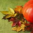 Big pumpkin and colorful autumn leaves on a green wooden backgro — Stock Photo #54705165