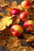 Fresh apples on a table strewn with autumn leaves — Stock Photo