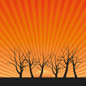 Vector drawing of the sun and old trees without leaves — Stock Vector