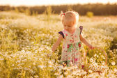 Happy child outdoors in summer  fiel — Stock Photo