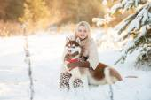 Girl embracing cute dog in winter park. The girl with the siberi — Foto Stock