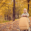 Autumn portrait of a cute little girl — Stock Photo #58738497