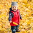 Little baby boy playing with yellow leaves in autumn park on sun — Stock Photo #58739627