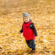 Little boy in autumn — Stock Photo #58739659