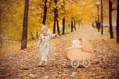 美しい小さな女の子が秋の公園でベビーカーをロールします。 — ストック写真