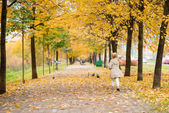 Beautiful little girl runs for birds in autumn park — Stock Photo