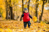 Cute baby boy run  among fallen leaves in autumn park — Stock Photo